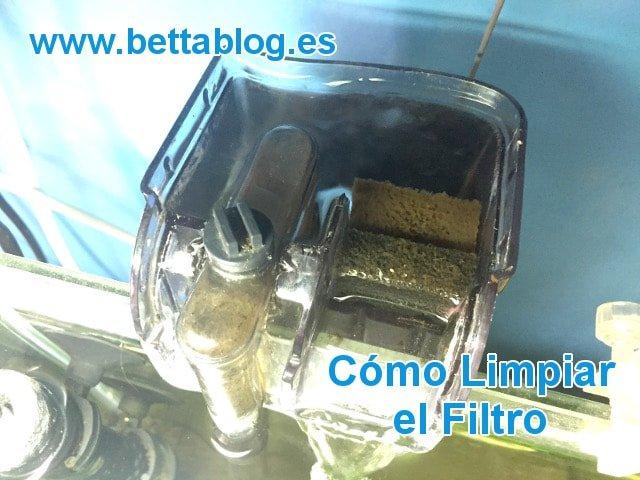 Limpiar Filtro Acuario